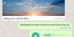 telegrama whatsapp goruntusu vermek